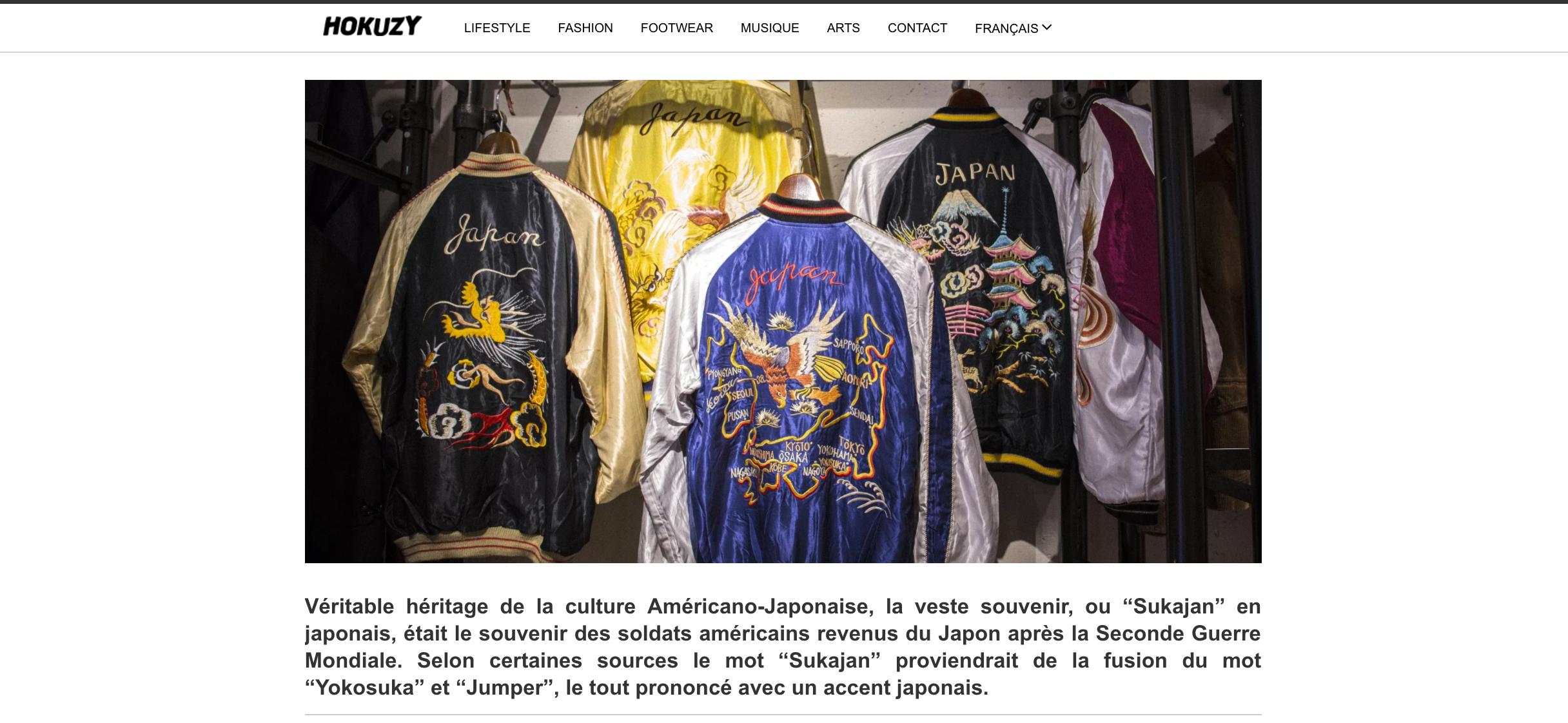 site-page-hokuzy-6