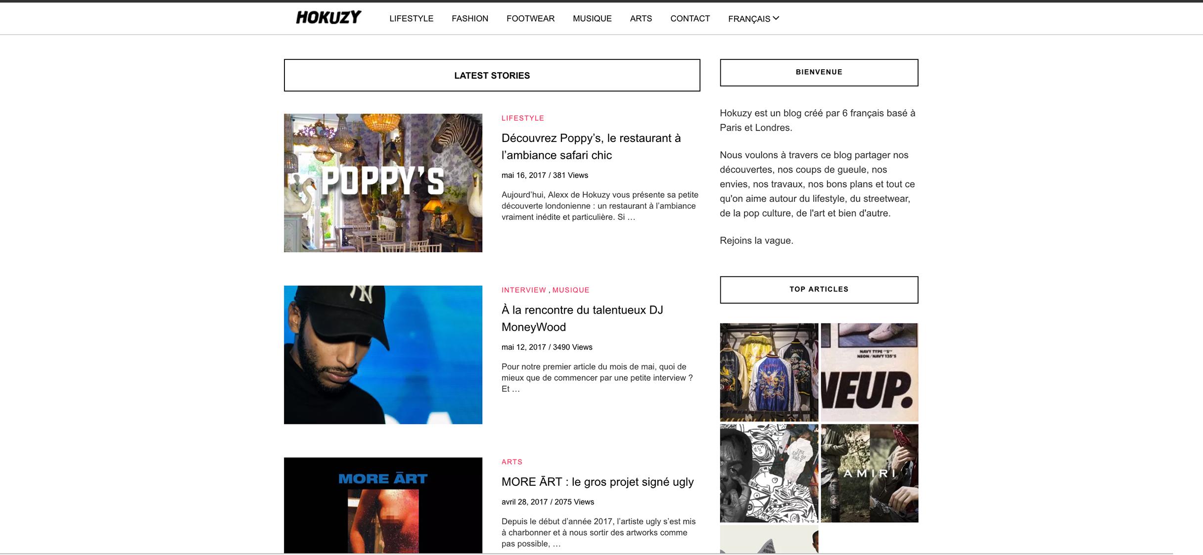 site-page-hokuzy-1